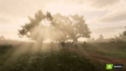 A large tree with god rays peaking through in Red Dead Redemption 2